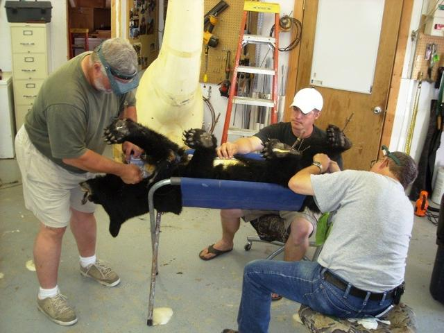 Bruce, Adam, and Marty sewing the bear.