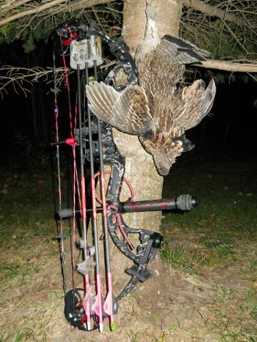 2012 Archery Grouse