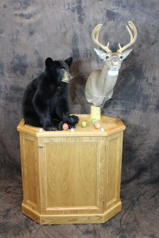 Brad Nelson Black Bear - Best Professional Large Mammal