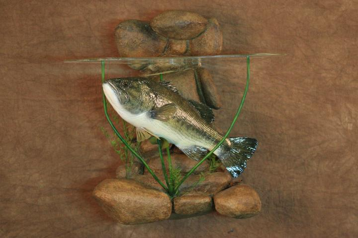 Best All Around Taxidermist - Jeff Specht, Large Mouth Bass