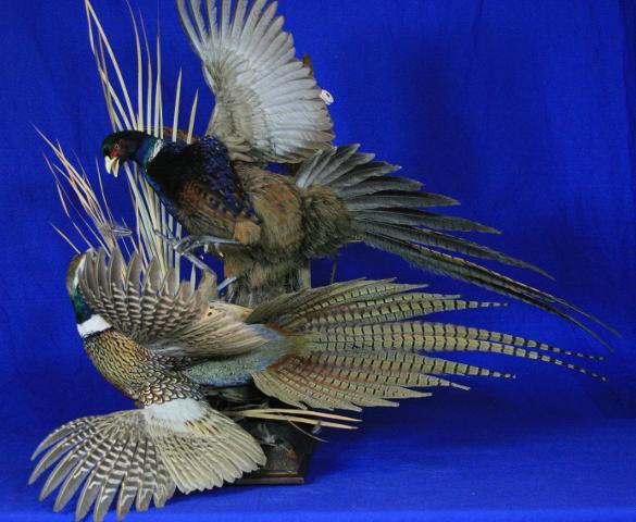 People's Choice, Artisan Award - Scott Vohnoutka Pheasants