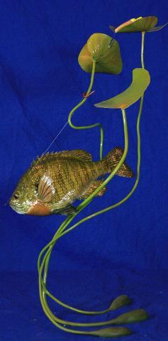 WASCO Most Artistic Award, McKenzie Taxidermist Choice Best Fish - Ron Grams Bluegill