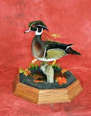 Professional Competitor's Award, Wood Duck by Aaron Reiling