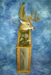 Professional Entry: Whitetail by Anthony Koziolek