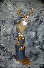 Garrett Sunram, Whitetail Deer Masters