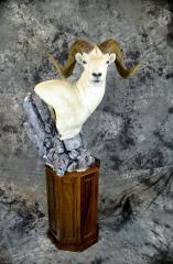 Garrett Sunram, Dall Sheep Masters