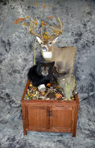 Brad Graber, whitetail and black bear professional