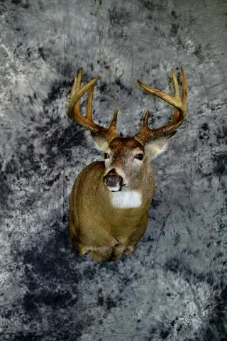 Paul Martinetto, whitetail professional