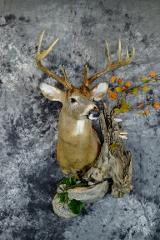 Jim Ryks, whitetail professional