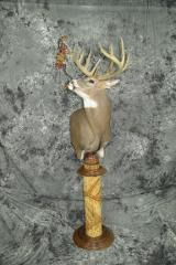 Whitetail deer- Kirk Peterson