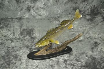 Walleye - Marty Wiley